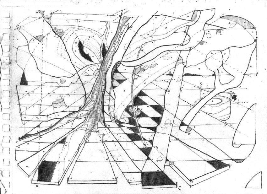 Geographie de l'arbre